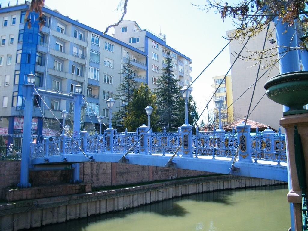 Azulón precioso en Eskisehir