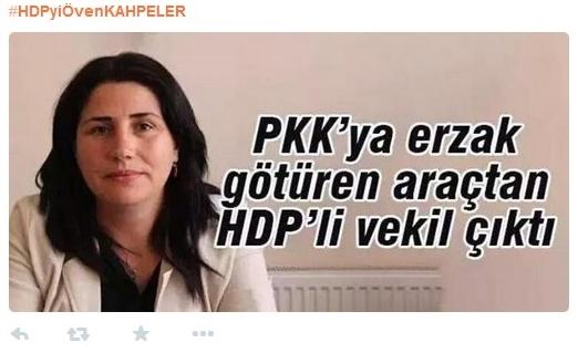 HDP en relación al PKK