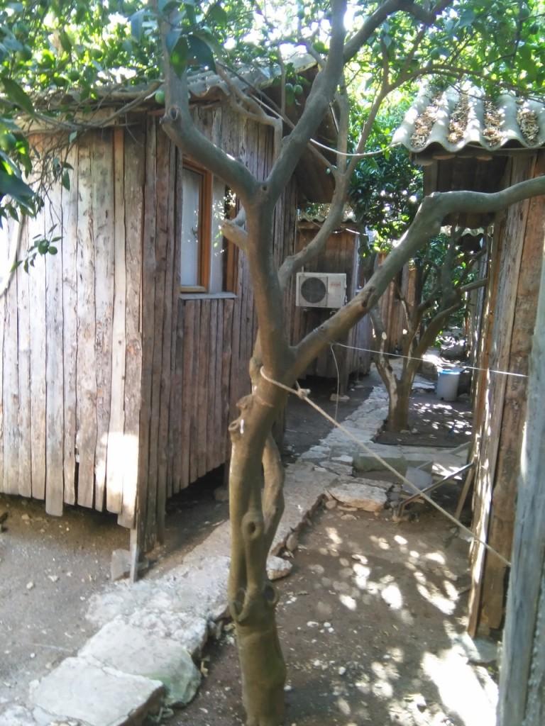 cabaña en Olympus