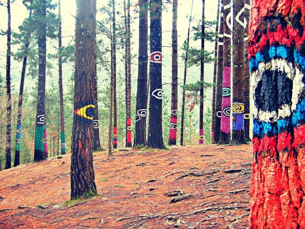Ojos que todo lo ven en el bosque de Oma