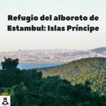 Refugio del alboroto de Estambul: Islas Príncipe